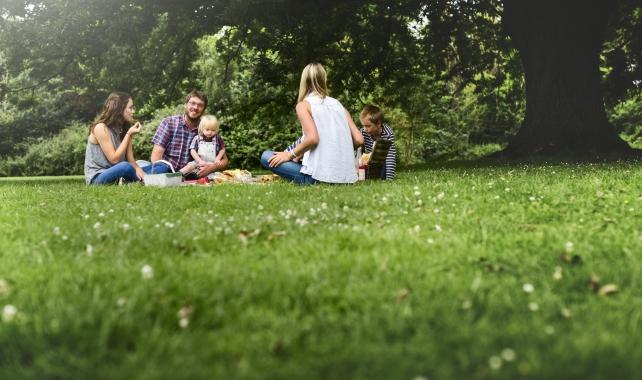 piknik kapak.jpg